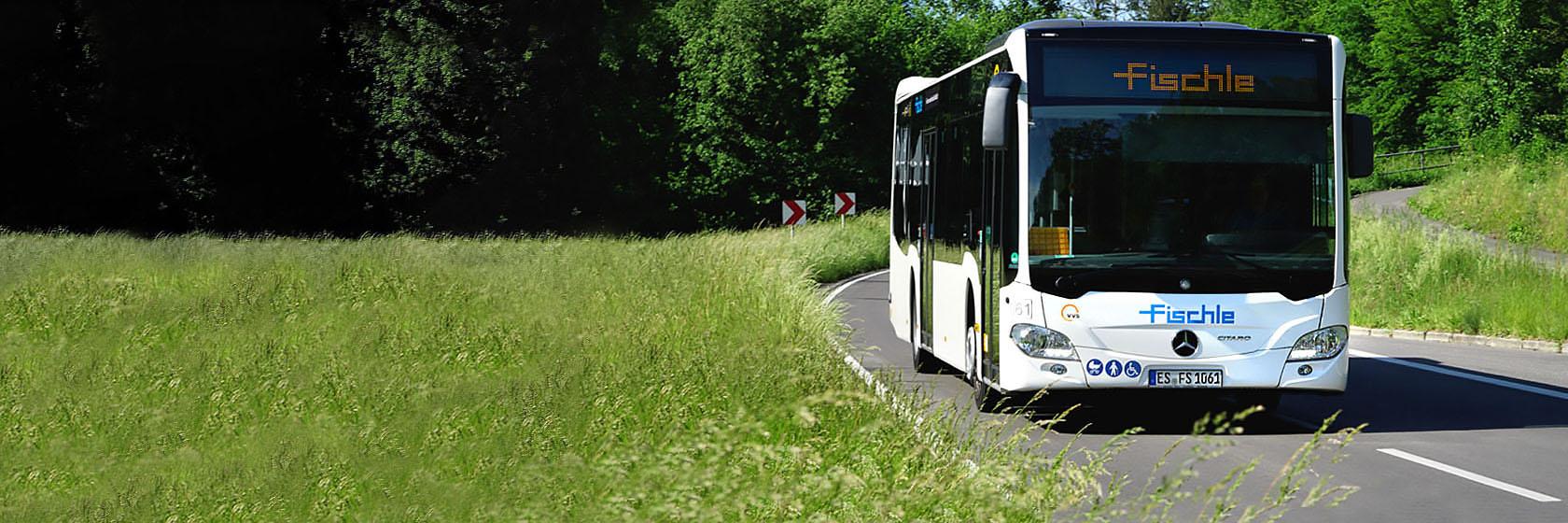 Fischle-Start-feld-bus.jpg